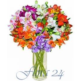 Заказ садовых цветов по почте украины купить подарок женщине в интернете